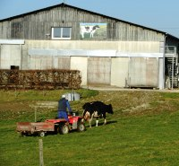 conseil-elevage-controle-laitier-nutritionniste-bovin-ruminants